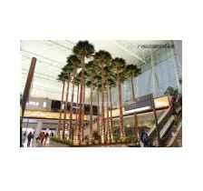 保鲜棕榈树销售